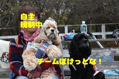 埼玉オフ会 (46)