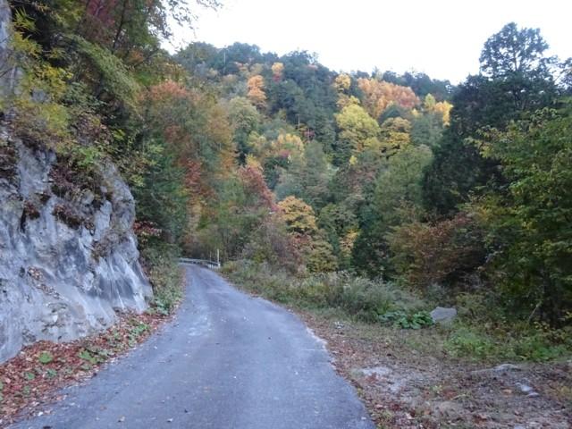 10月17日 最初は林道