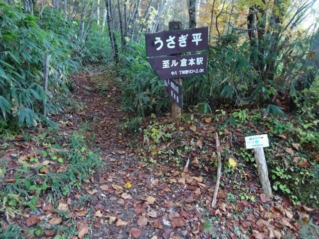 10月17日 林道はうさぎ平まで