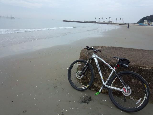 11月7日 浜辺