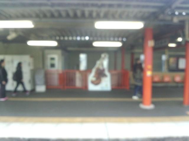 11月19日 伏見稲荷駅にサファイヤ
