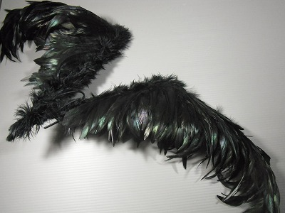 hane-2015nov 029