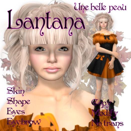 Lantana skin Panel 525