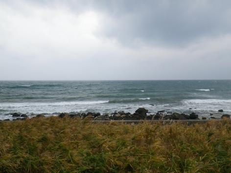 酒田屋旅館 景色 海