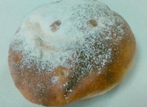 豆パン屋 アポロ (6)