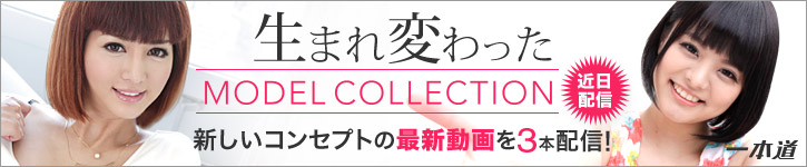 MODELCOLLECTION