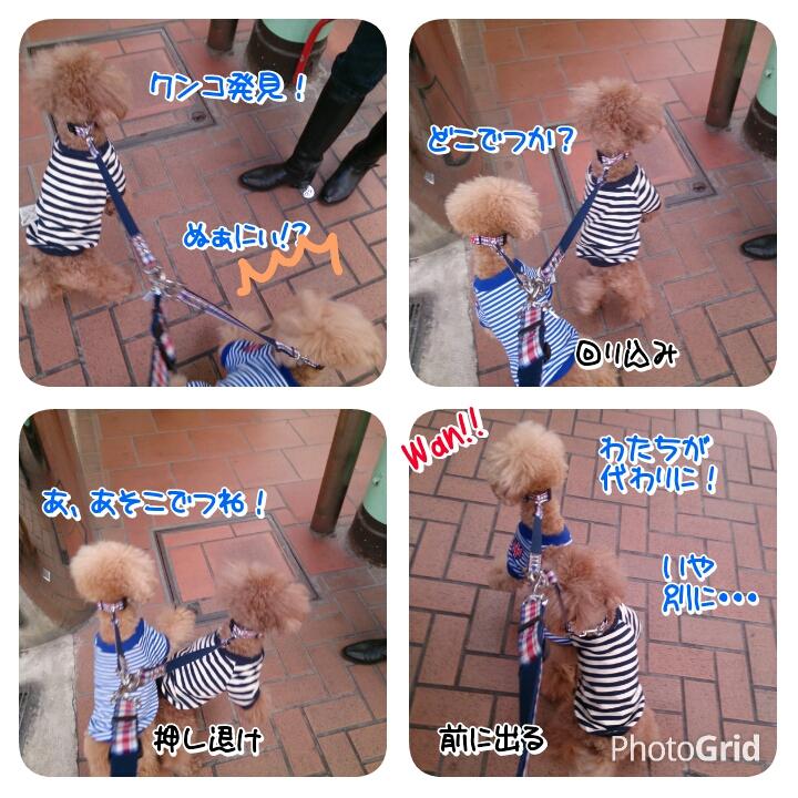 201511082144151c0.jpg