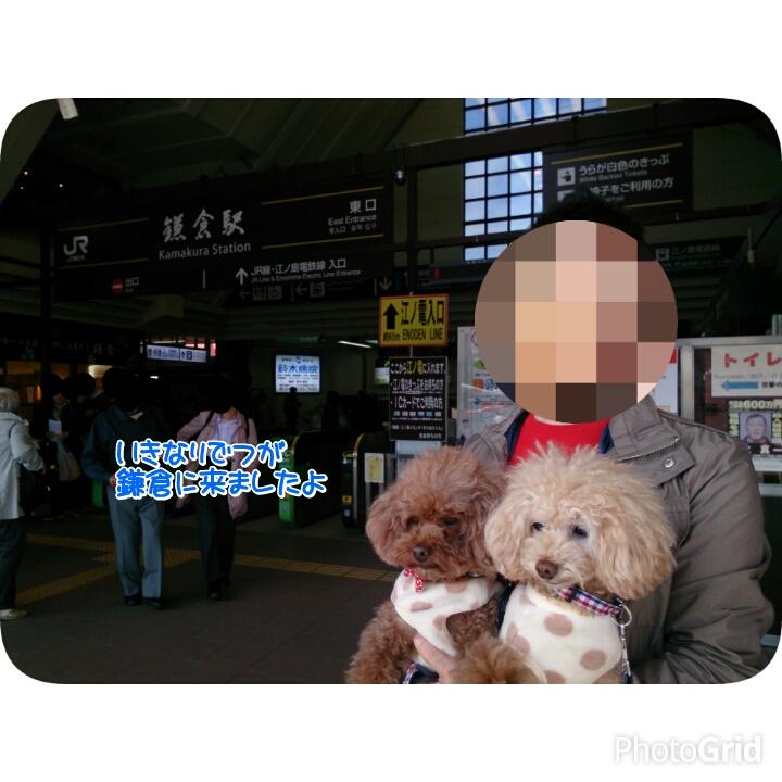 201511162301451a2.jpg