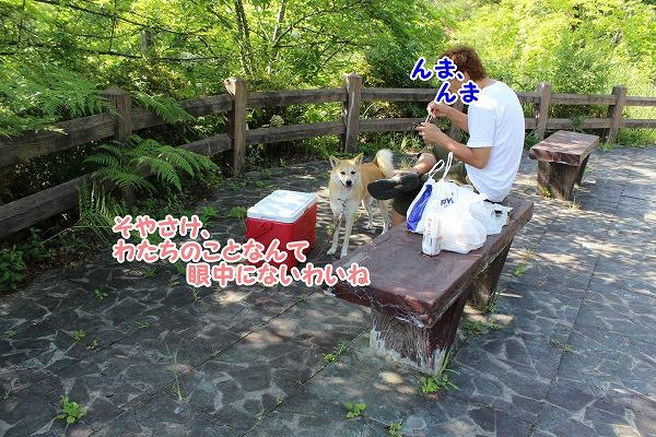 s-koiji151108-IMG_9003