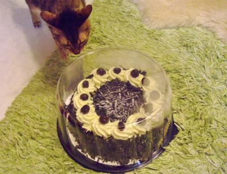 コストコ ブラックフォレストケーキ