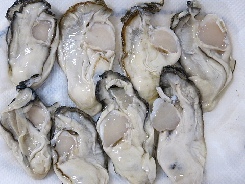 牡蠣フライレシピ4