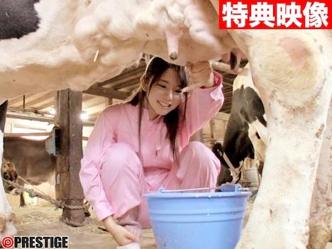 【新作】新人 プレステージ専属デビュー 熊倉しょうこ 15