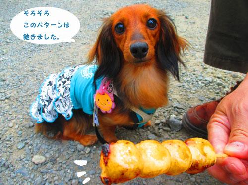 2015-09-yamanasi37.jpg
