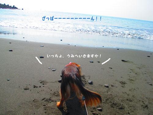 2015-10-umi14.jpg