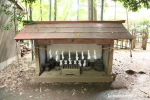 館氷川神社(志木市柏町)24