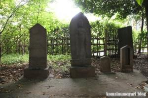 館氷川神社(志木市柏町)26
