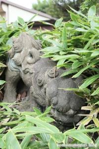 上ノ氷川神社(志木市上宗岡)20