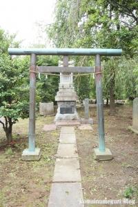 下ノ氷川神社(志木市下宗岡)16