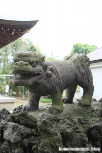 下ノ氷川神社(志木市下宗岡)22