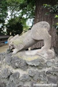 下ノ氷川神社(志木市下宗岡)27
