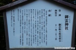 駒形大神宮(市川市大野町)26