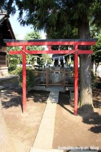 溝沼氷川神社(朝霞市本町)10