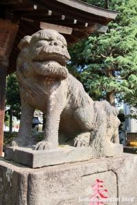 溝沼氷川神社(朝霞市本町)15