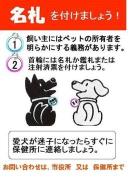 moblog_d2062109.jpg