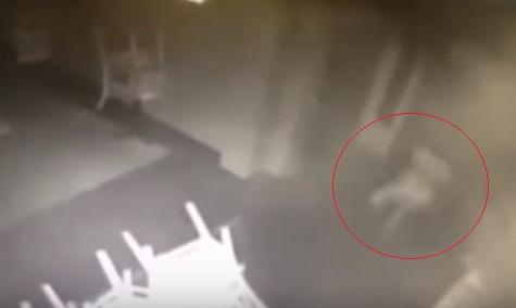 【心霊現象】アメリカ・サンフランシスコのバーの監視カメラに白い服を着た「走る少女」の幽霊がハッキリと映り込む!