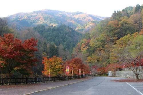 大柳川渓谷を歩く①駐車場から天渕の滝まで