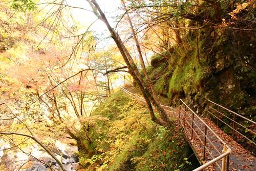 吊り橋コースへ15