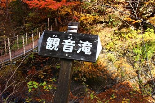 吊り橋コースへ33