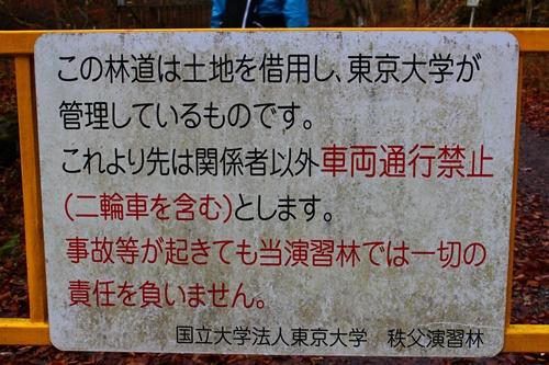 大川渓谷3