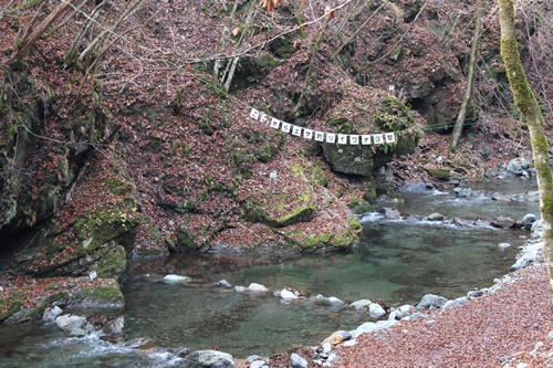 大川渓谷5