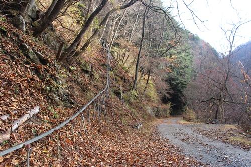 大川渓谷11