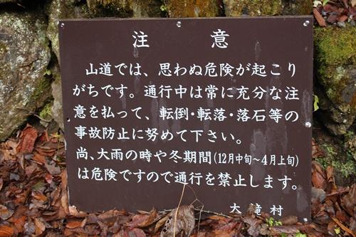 大川渓谷15