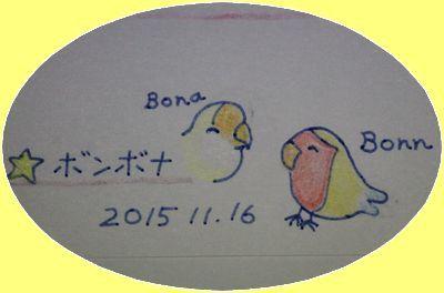 20151118211719b98.jpg