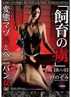 「飼育の虜」 変態マゾ男とペニバン女 【第六章】