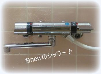 シャワー2